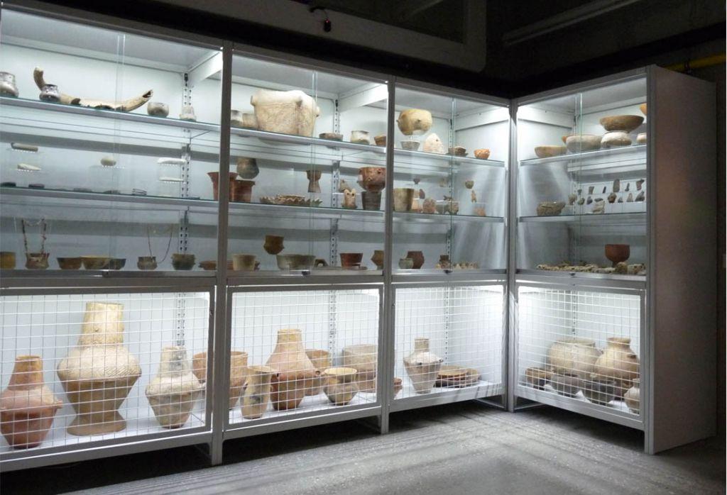 Múzeumi vitrin